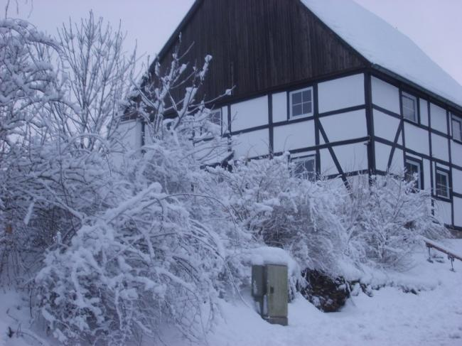 Winter in Oberbergheim