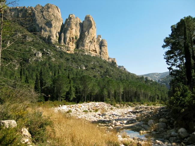 natural parc Els Ports