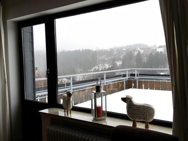 Uitzicht (winter)
