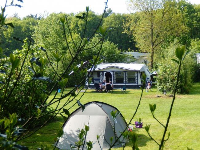 camping, drenthe, honden welkom camping, huisdier toegestaan, diervriendelijk, kamperen, comfort kamperen
