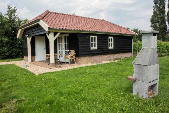 Huisje Roggenkamp - Terras Vakantiehuis veluwe, vakantiehuis, veluwe, vakantiepark, nieuw grapendaal, appelhof, Roggenkamp