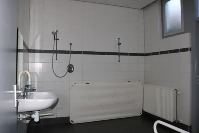 Aangepaste badkamer beneden