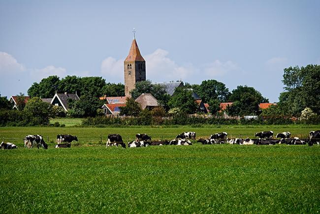 Vakantiewoning Limosa - Oosterland
