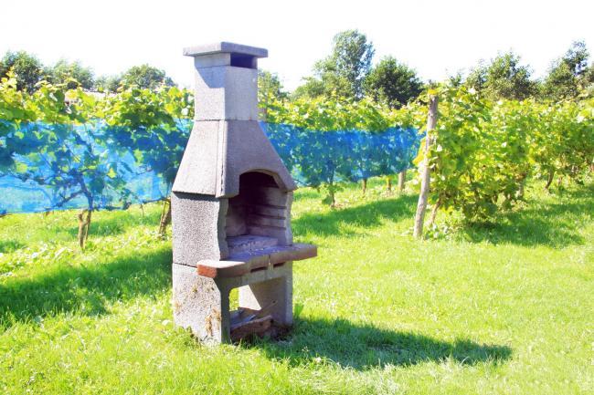 Huisje Roggenkamp - BBQ Vakantiehuis veluwe, vakantiehuis, veluwe, vakantiepark, nieuw grapendaal, appelhof, Roggenkamp
