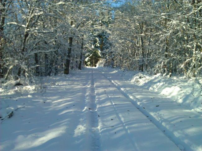 Winters genoegen