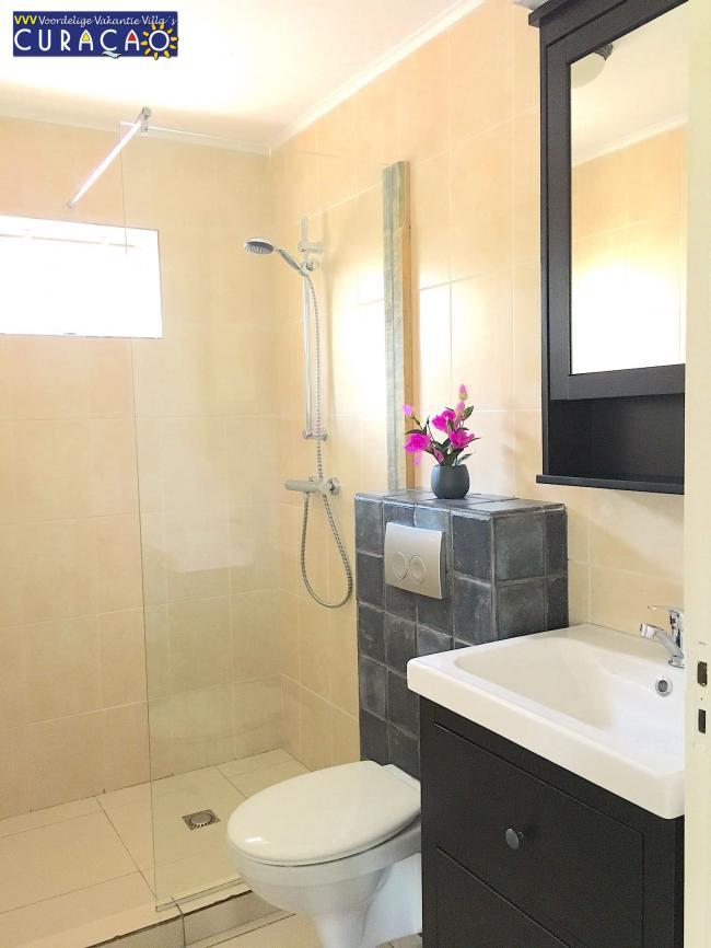 Moderne badkamer met douche, toilet en wastafel