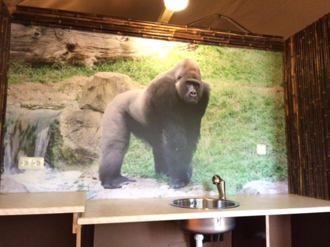 Küche Thema Gorilla