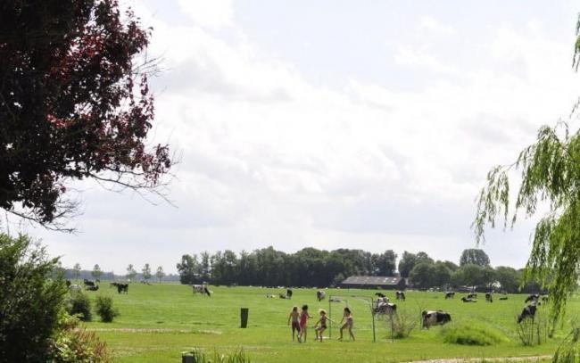 Hayema Heerd Oldehove Groningen