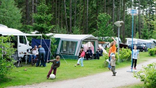 camping park de leemkule 1