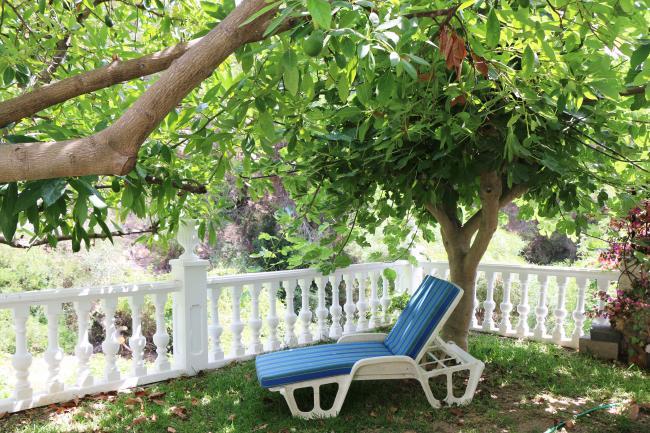 Fruitbomen in tuin Woning Burriana Nerja