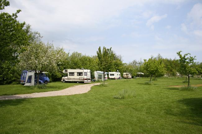 Camperplaats (tot 6 meter)