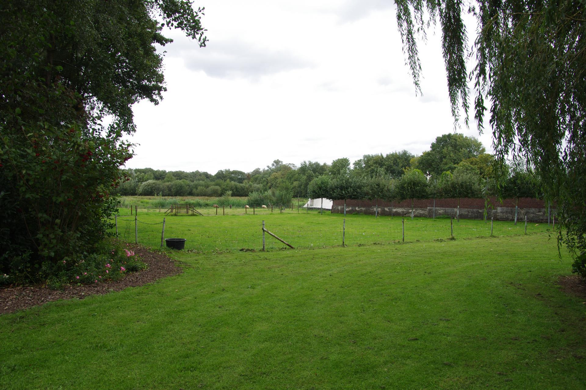 Vakantie Meerlo Onderwijzershuis, grasveld na het terras