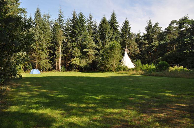 camping kooningsveld trekkersveld kamperen minicamping