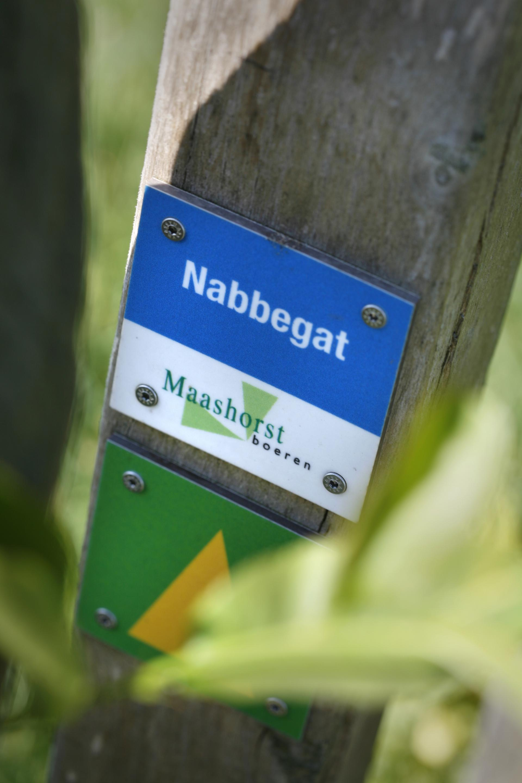 Nabbegat