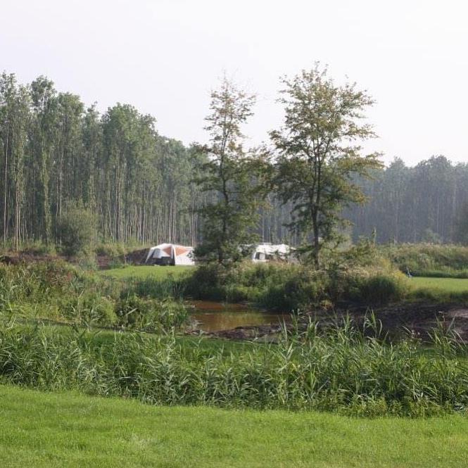 Tent,- Caravans en Vouwwagenkampeerplaats met stroom
