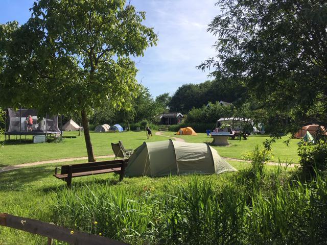 Campingplaats Kleine Tent zonder elektriciteit inclusief 1 persoon
