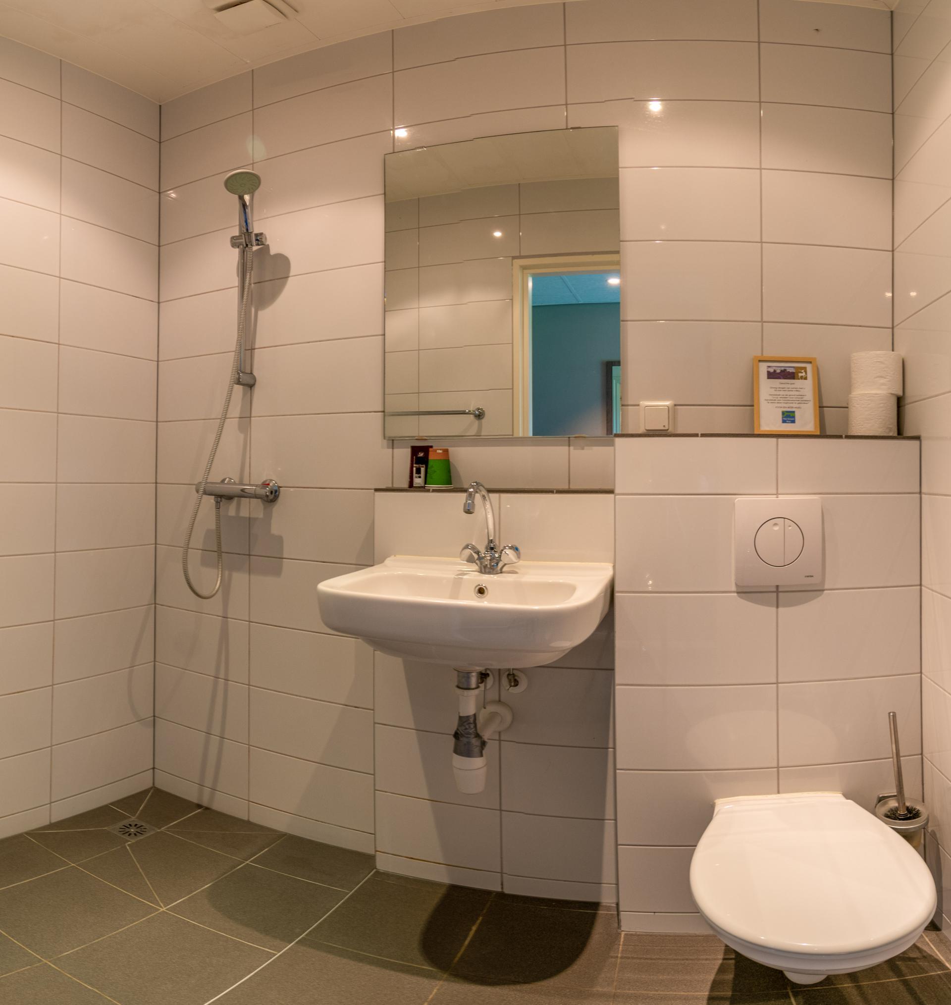 Nieuw Allardsoog - Das - Fazant - badkamer