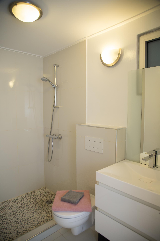 Badkamer 2 met wastafel, douche en toilet
