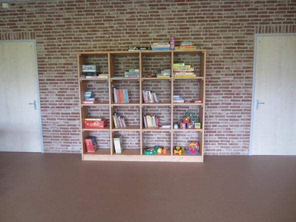 Groepsaccommodatie De Boerenzwaluw - boekenkast
