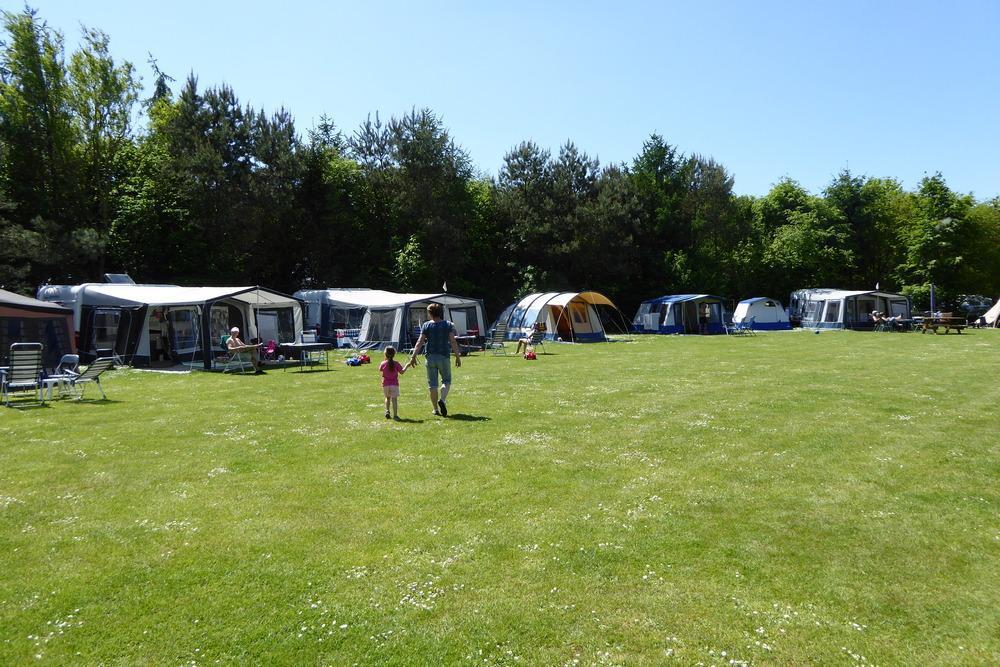 4 sterren familiecamping De Bronzen Emmer Basis Kampeerplaatsen Meppen Drenthe