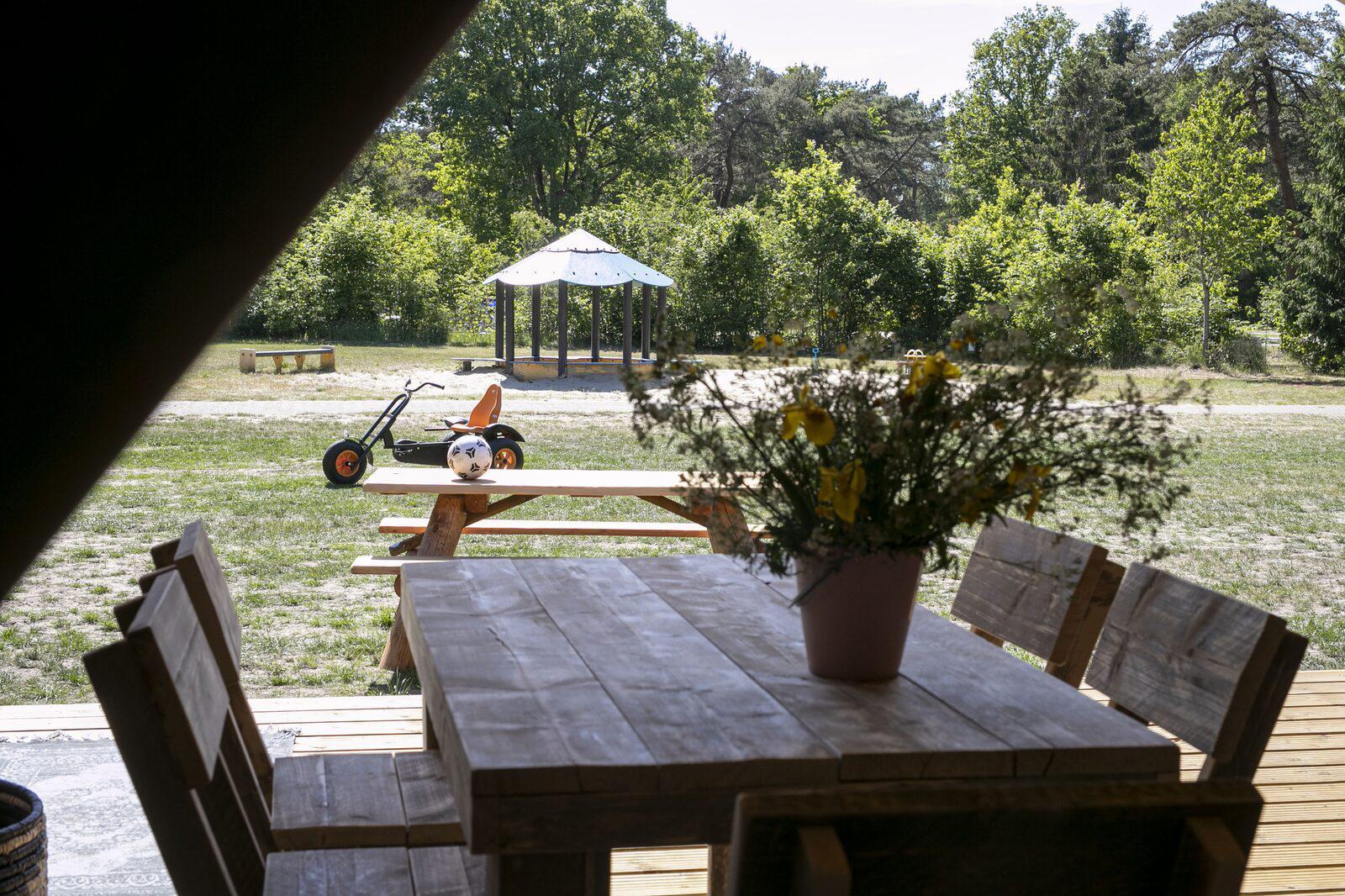 Witterzomer 5 persoons Safaritent Drenthe Assen