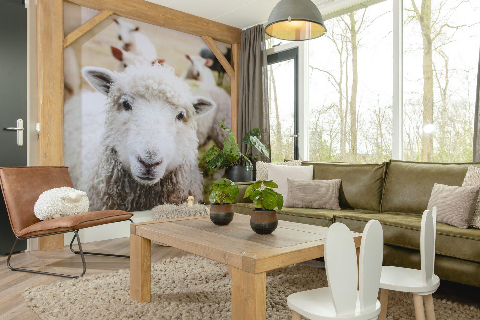 Vakantiepark Mölke bungalow 5 personen Zuna Overijssel