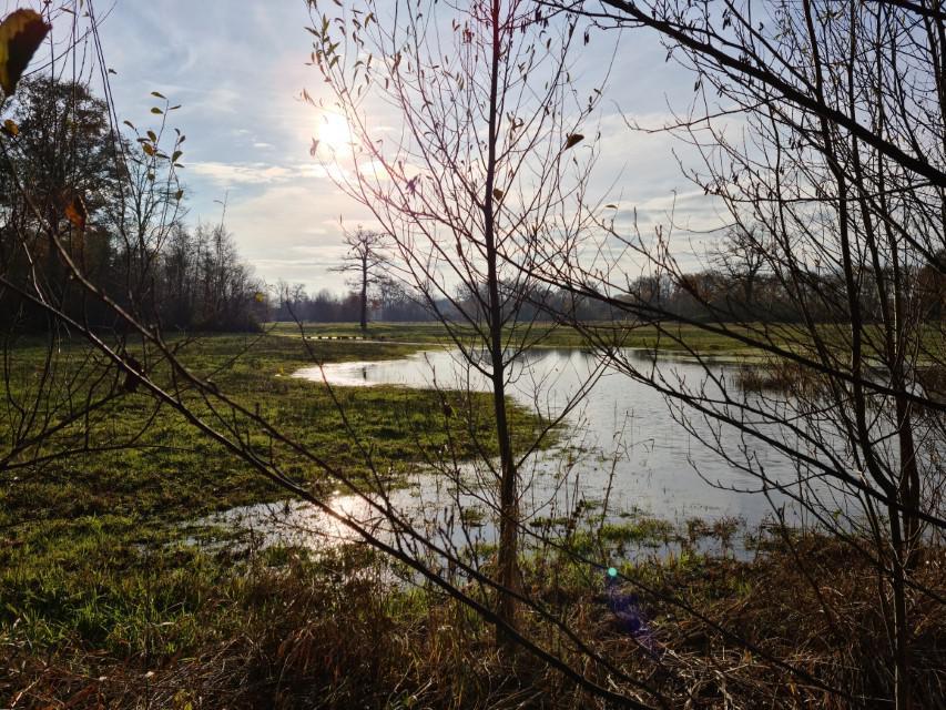 Natuur en omgeving - groepsaccommodatie Vliersche Veld in Neede (Achterhoek, Gelderland)