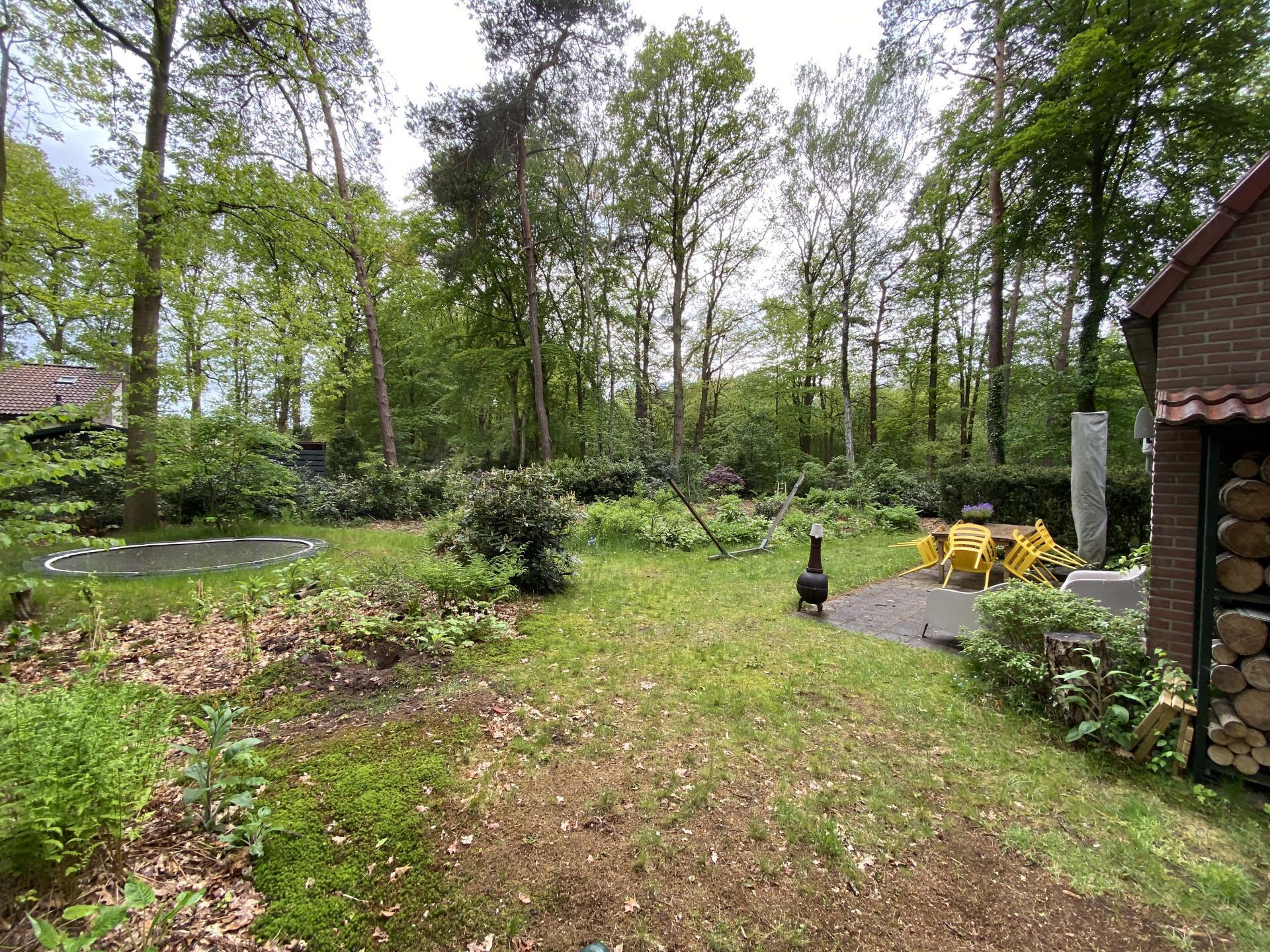 Natuurhuisje 144 tuin