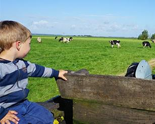 Landhoeve op de Veluwe